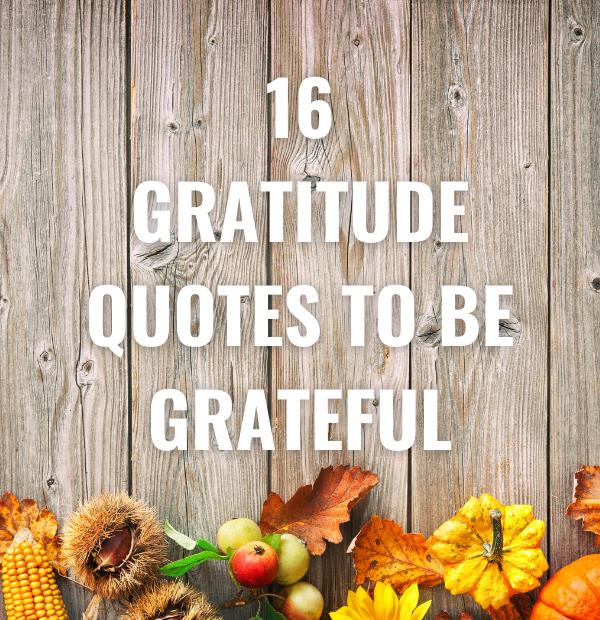 16 Gratitude Quotes to be Grateful