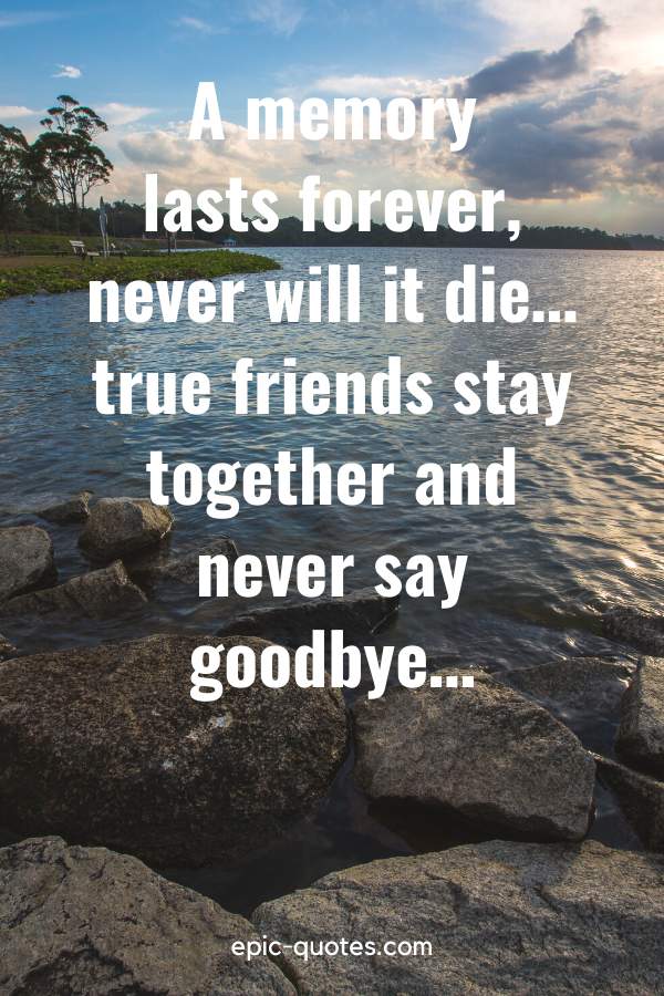 """""""A memory lasts forever, never will it die… true friends stay together and never say goodbye…"""""""