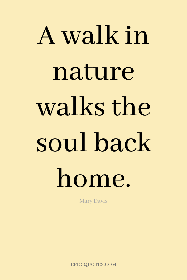 A walk in nature walks the soul back home. -Mary Davis