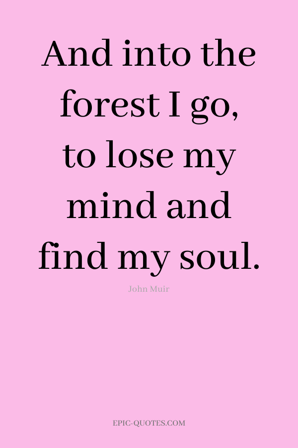 And into the forest I go, to lose my mind and find my soul. -John Muir