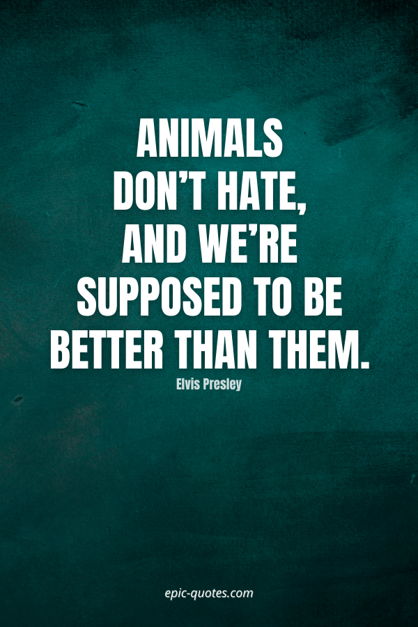 Animals don't hate, and we're supposed to be better than them. -Elvis Presley