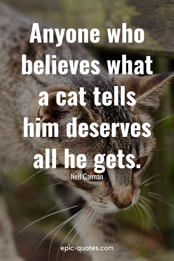 """""""Anyone who believes what a cat tells him deserves all he gets."""" -Neil Gaiman"""