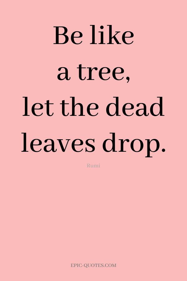 Be like a tree, let the dead leaves drop. -Rumi