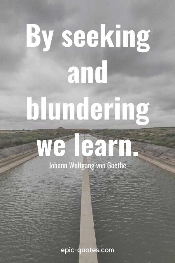 """By seeking and blundering we learn."" -Johann Wolfgang von Goethe"