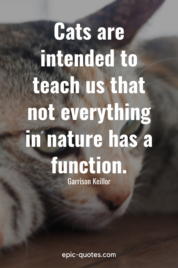 """""""Cats are intended to teach us that not everything in nature has a function."""" -Garrison Keillor"""