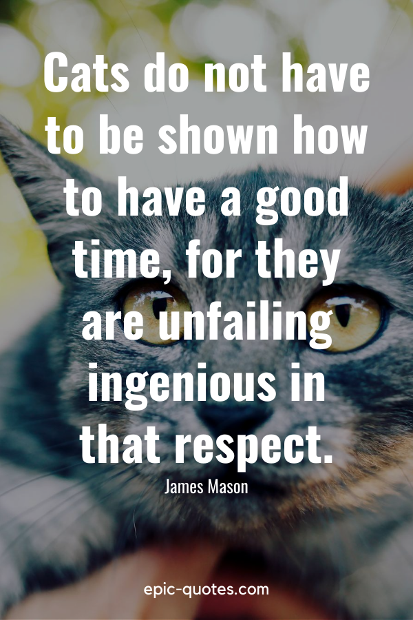 """""""Cats do not have to be shown how to have a good time, for they are unfailing ingenious in that respect."""" -James Mason"""