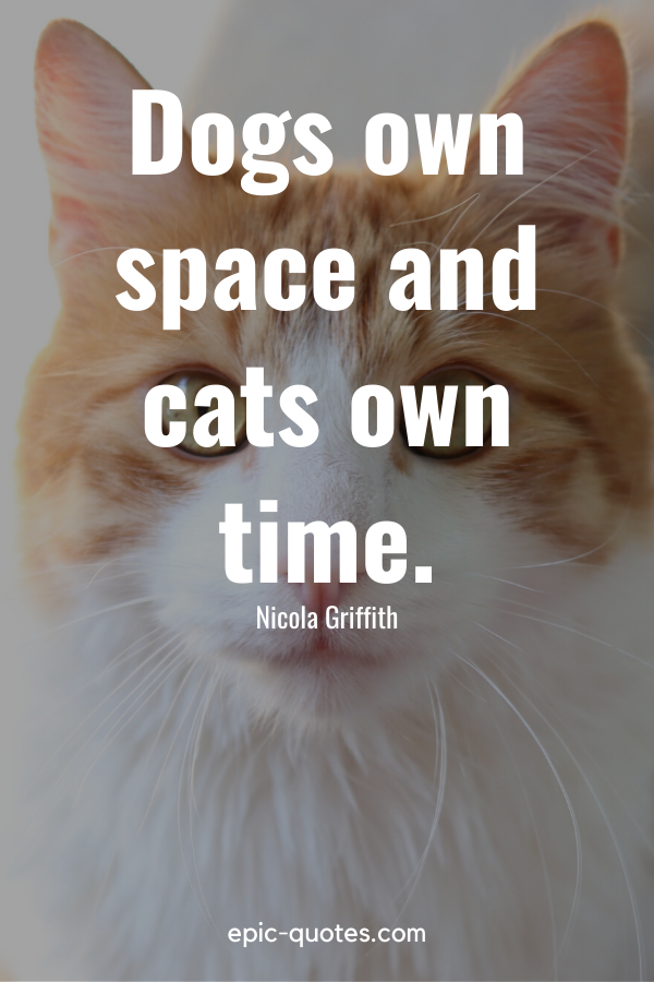 """""""Dogs own space and cats own time."""" -Nicola Griffith"""