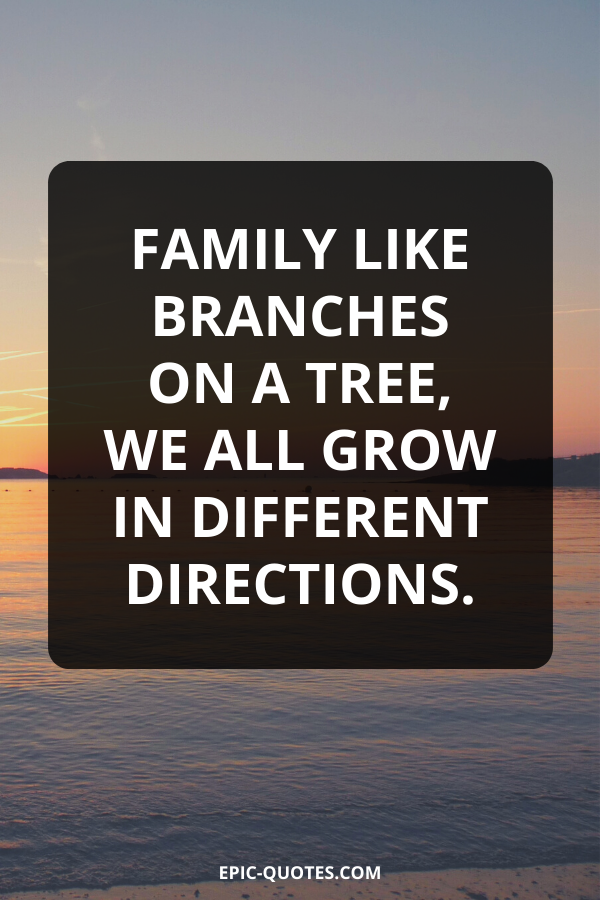 Family like branches on a tree, we all grow in different directions.