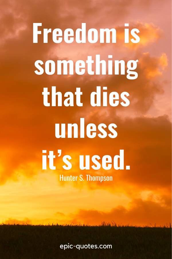 """""""Freedom is something that dies unless it's used."""" -Hunter S. Thompson"""