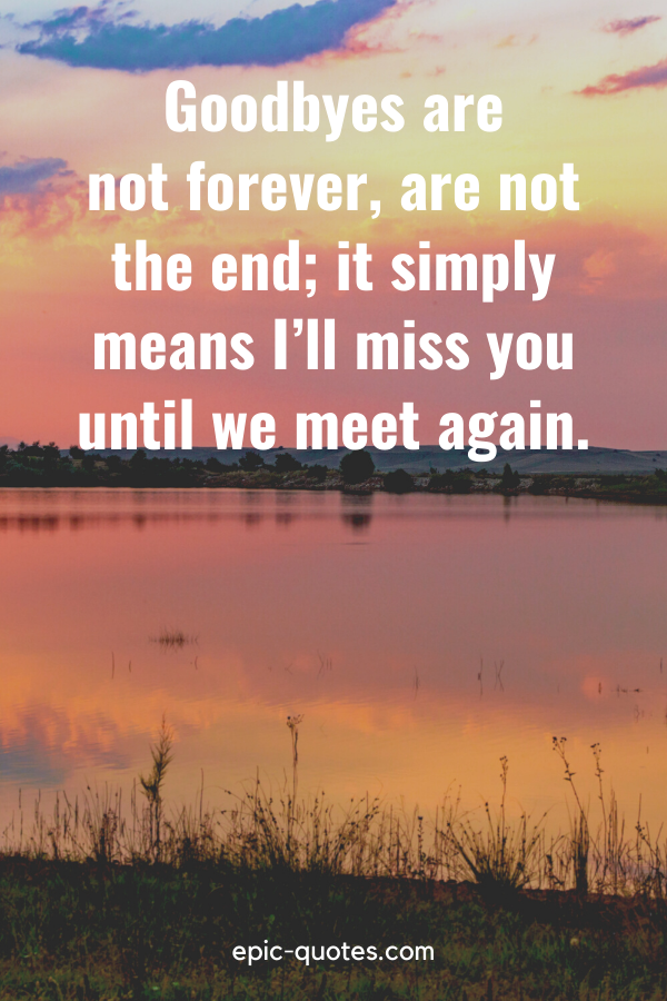 """""""Goodbyes are not forever, are not the end; it simply means I'll miss you until we meet again."""""""