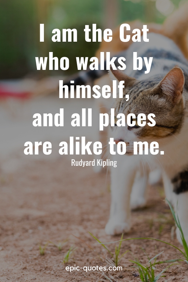 """""""I am the Cat who walks by himself, and all places are alike to me."""" -Rudyard Kipling"""