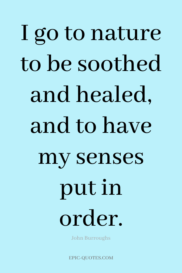 I go to nature to be soothed and healed, and to have my senses put in order. -John Burroughs