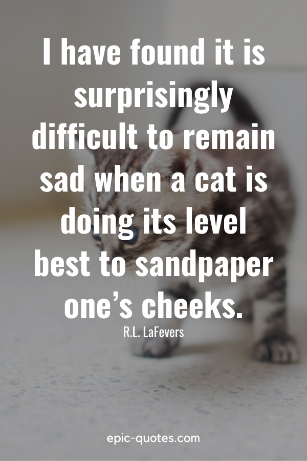 """""""I have found it is surprisingly difficult to remain sad when a cat is doing its level best to sandpaper one's cheeks."""" -R.L. LaFevers"""
