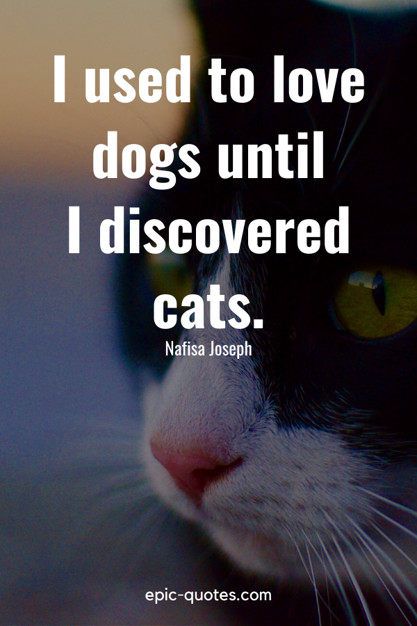 """""""I used to love dogs until I discovered cats."""" -Nafisa Joseph"""