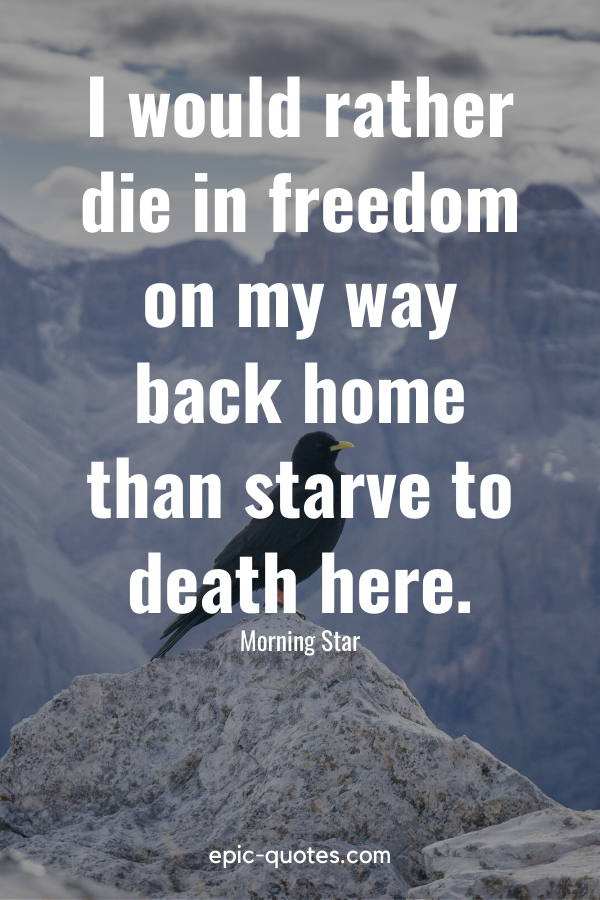 """""""I would rather die in freedom on my way back home than starve to death here."""" -Morning Star"""
