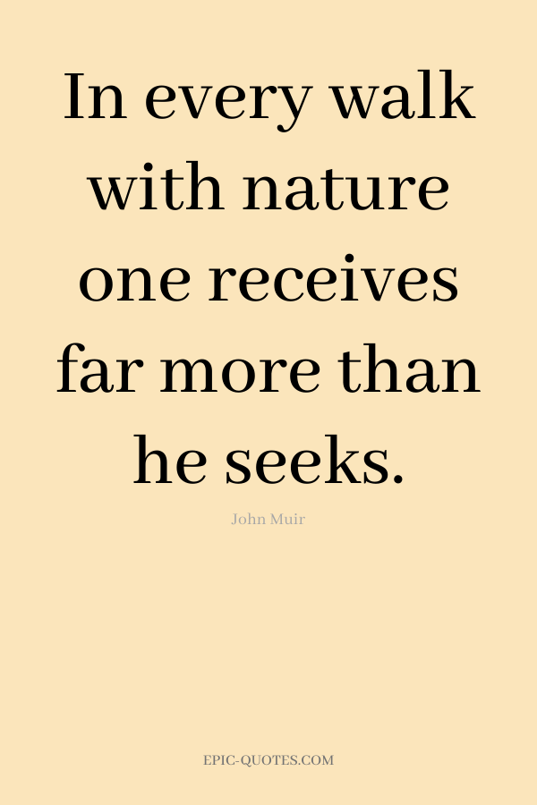 In every walk with nature one receives far more than he seeks. -John Muir