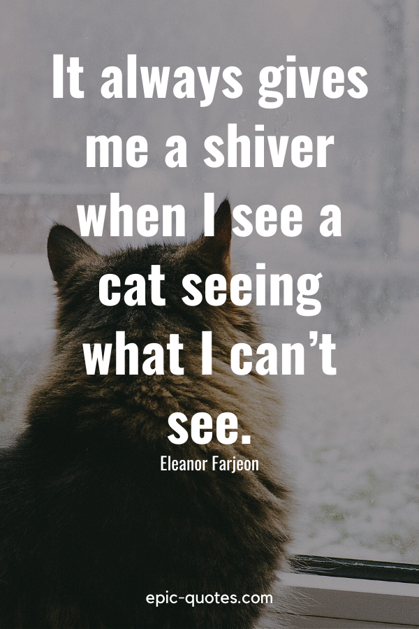 """""""It always gives me a shiver when I see a cat seeing what I can't see."""" -Eleanor Farjeon"""