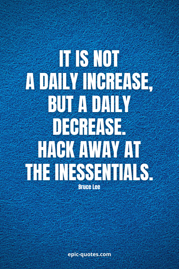 It is not a daily increase, but a daily decrease. Hack away at the inessentials. -Bruce Lee