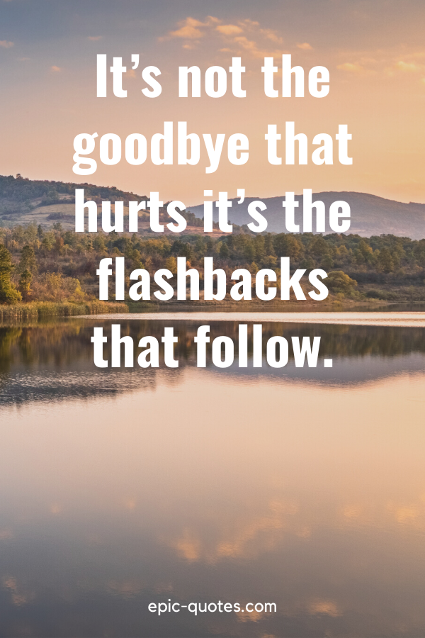 """""""It's not the goodbye that hurts it's the flashbacks that follow."""""""
