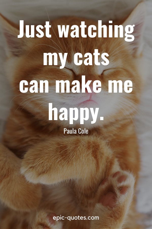 """""""Just watching my cats can make me happy."""" -Paula Cole"""