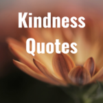 36 Kindness Quotes