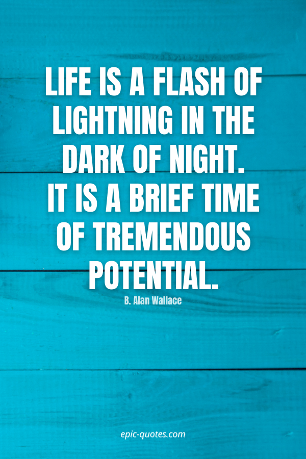 Life is a flash of lightning in the dark of night. It is a brief time of tremendous potential. -B. Alan Wallace
