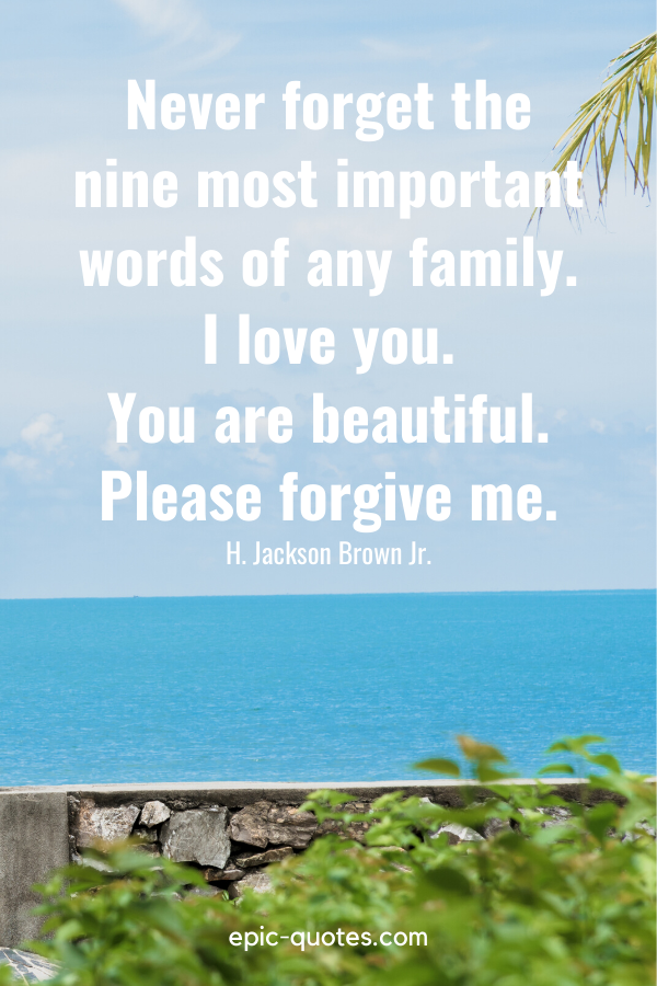 """""""Never forget the nine most important words of any family – I love you. You are beautiful. Please forgive me."""" -H. Jackson Brown Jr."""