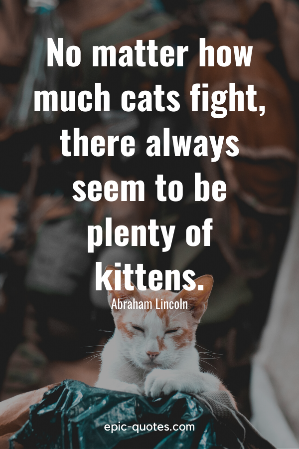 """""""No matter how much cats fight, there always seem to be plenty of kittens."""" -Abraham Lincoln"""
