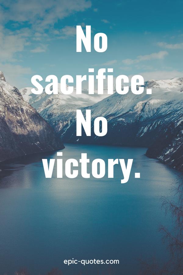 """""""No sacrifice no victory."""""""