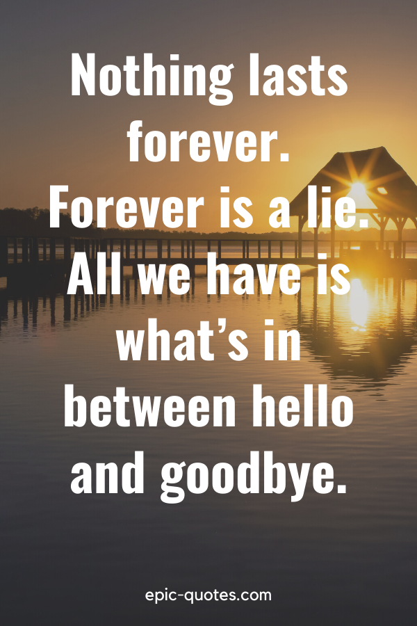 """""""Nothing lasts forever. Forever is a lie. All we have is what's in between hello and goodbye."""""""
