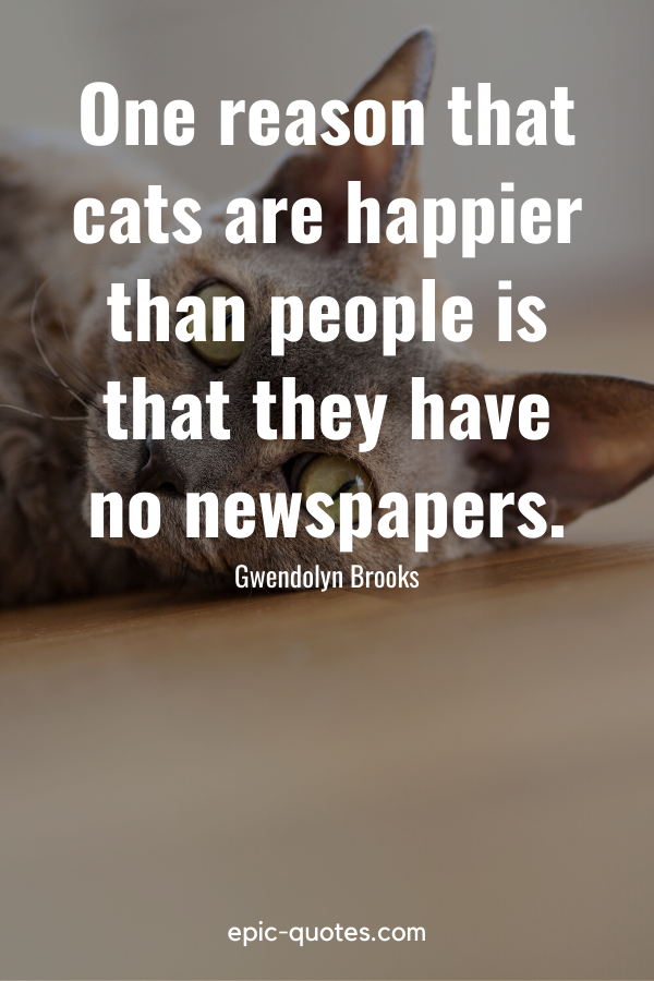 """""""One reason that cats are happier than people is that they have no newspapers."""" -Gwendolyn Brooks"""