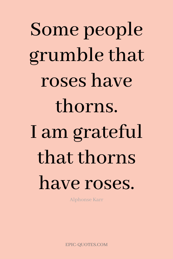 Some people grumble that roses have thorns. I am grateful that thorns have roses. -Alphonse Karr
