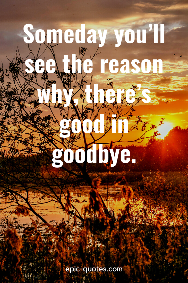 """""""Someday you'll see the reason why, there's good in goodbye."""""""