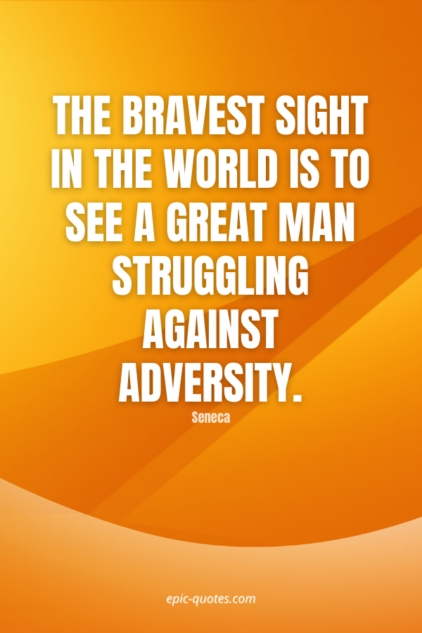 The bravest sight in the world is to see a great man struggling against adversity. -Seneca