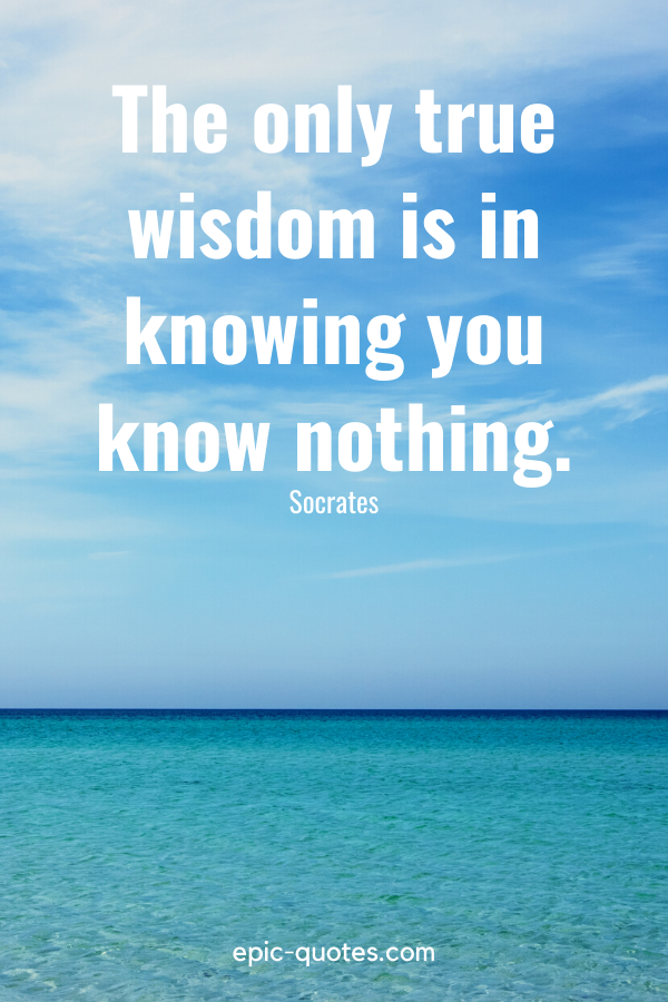 """""""The only true wisdom is in knowing you know nothing."""" -Socrates"""