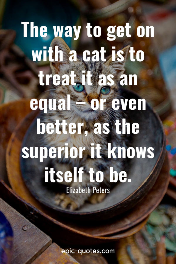 """""""The way to get on with a cat is to treat it as an equal – or even better, as the superior it knows itself to be."""" -Elizabeth Peters"""