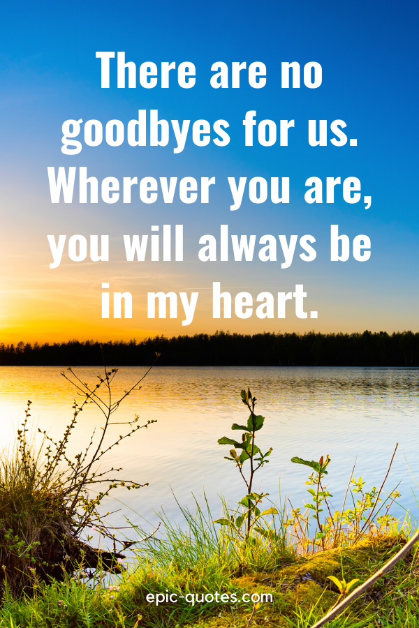 """""""There are no goodbyes for us. Wherever you are, you will always be in my heart."""""""