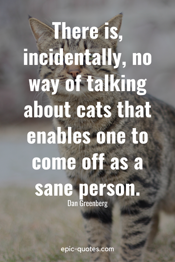 """""""There is, incidentally, no way of talking about cats that enables one to come off as a sane person."""" -Dan Greenberg"""