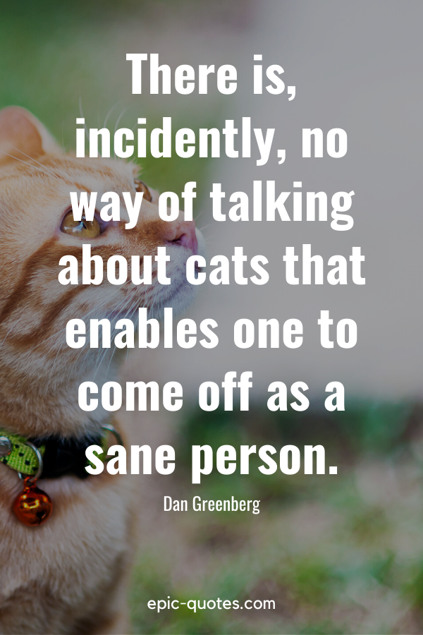 """""""There is, incidently, no way of talking about cats that enables one to come off as a sane person."""" -Dan Greenberg"""