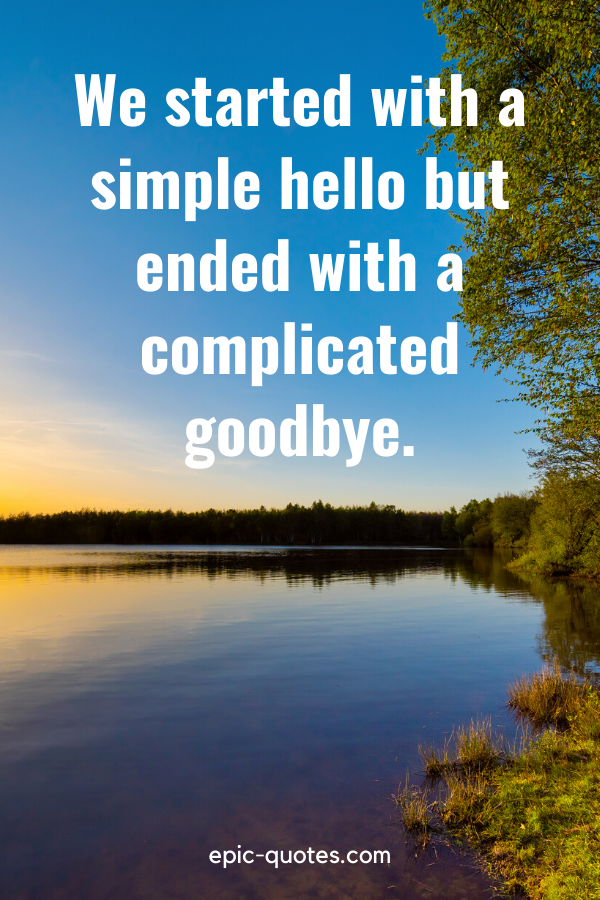 """""""We started with a simple hello but ended with a complicated goodbye."""""""