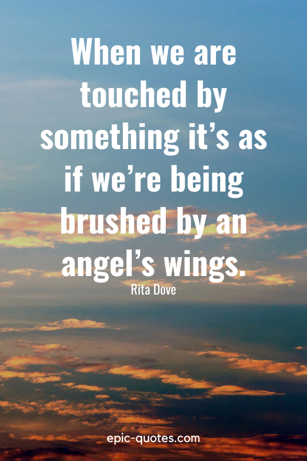 """""""When we are touched by something it's as if we're being brushed by an angel's wings."""" -Rita Dove"""