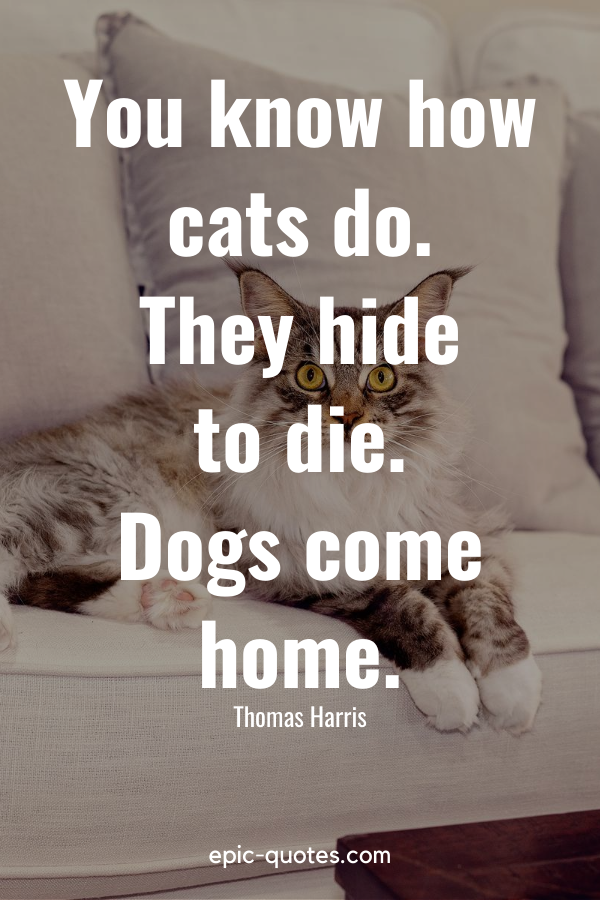 """""""You know how cats do. They hide to die. Dogs come home."""" -Thomas Harris"""