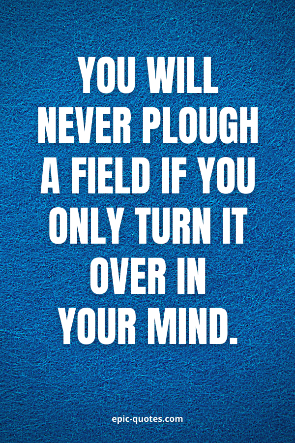 You will never plough a field if you only turn it over in your mind.